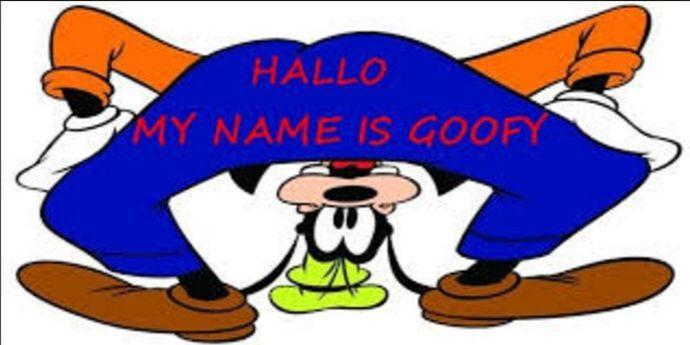 Despre Goofy şi Zucky, businessmani de succes